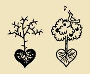 A szívünkből fakadó termés